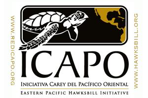 ICAPO-ES_Logos